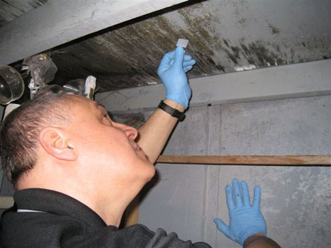 Mold Tape  Sampling 8